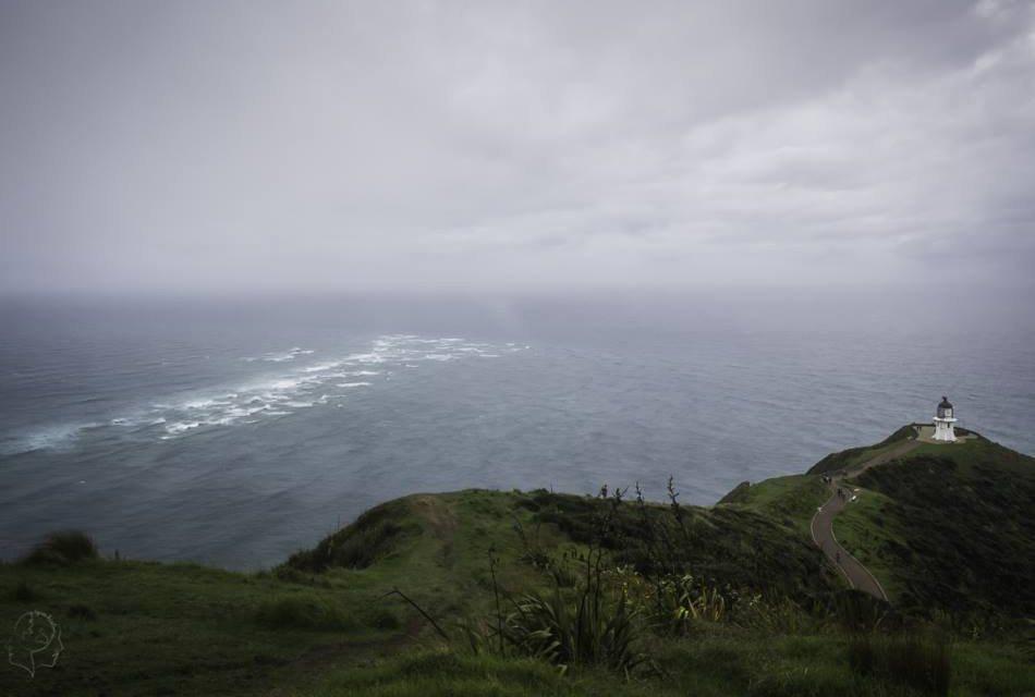 Najpiękniejsze miejsca w Nowej Zelandii - Northland i Cape de Reinga