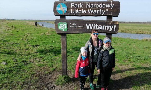 Dziennik #2.4 Park Narodowy Ujście Warty – Dzika Odyseja Głuszyków