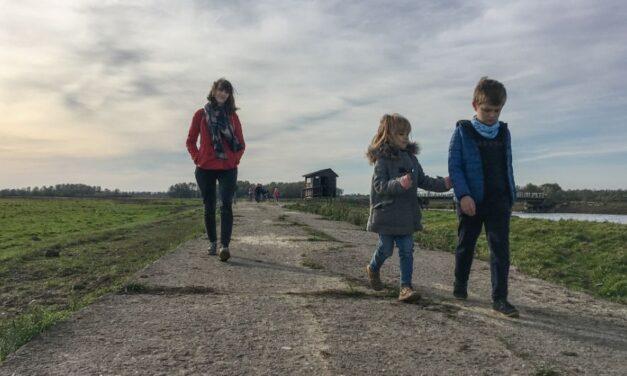 Dziennik #2.5 Park Narodowy Ujście Warty – Dzika Odyseja rodziny Motrenko
